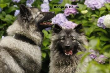 Ronja+Paula